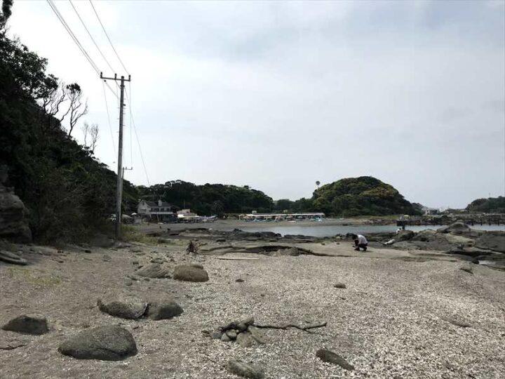 油壺 荒井浜 野営地1