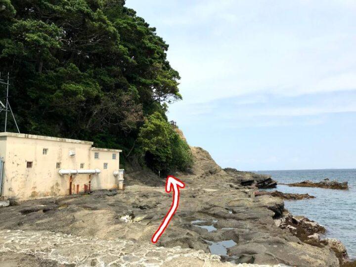 胴網海岸~荒井浜へ続く道