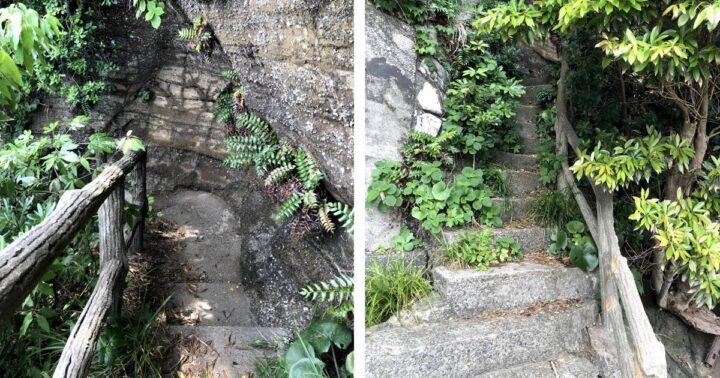 胴網海岸~荒井浜へ 階段