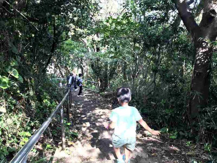 城ヶ島公園 階段