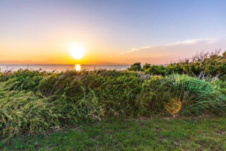 荒崎公園 夕日の丘 夕日