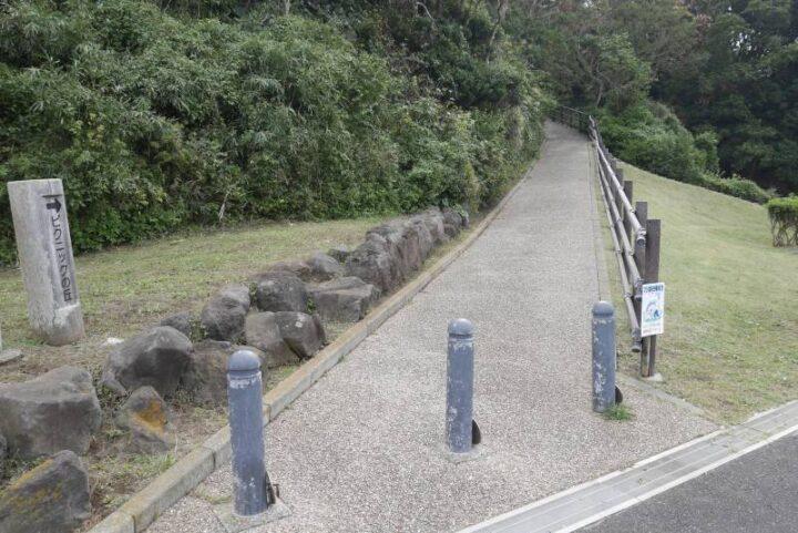 荒崎公園 ピクニックの丘