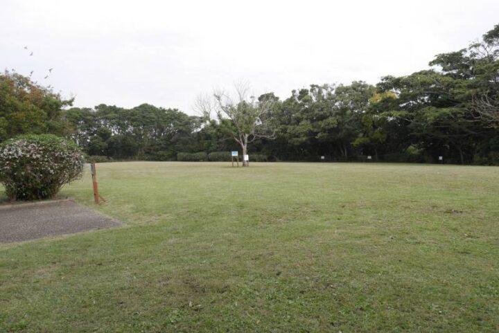 荒崎公園 ピクニックの丘 芝生