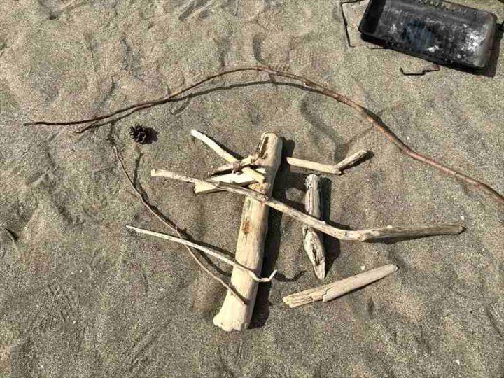 三浦海岸 流木