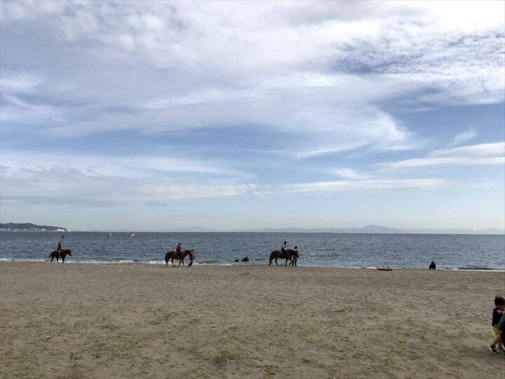 三浦海岸 無料駐車場 バーベキュー デイキャンプ