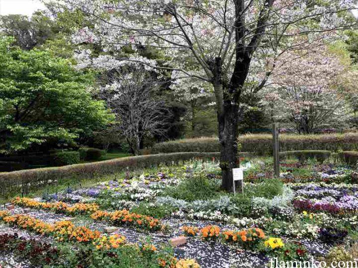 上大島キャンプ場 相模川自然の村公園