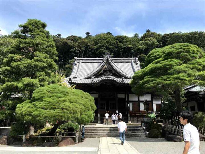 だるま山高原キャンプ場 修善寺