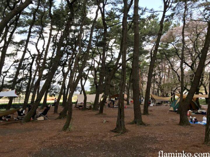 上大島キャンプ場 林間サイト