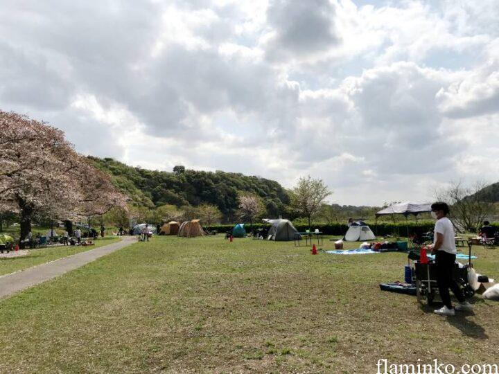 上大島キャンプ場 芝サイト
