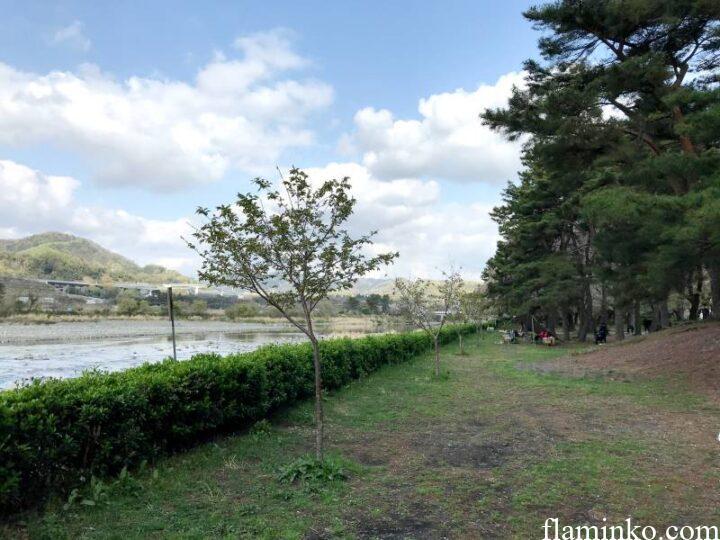 上大島キャンプ場 林間サイト奥