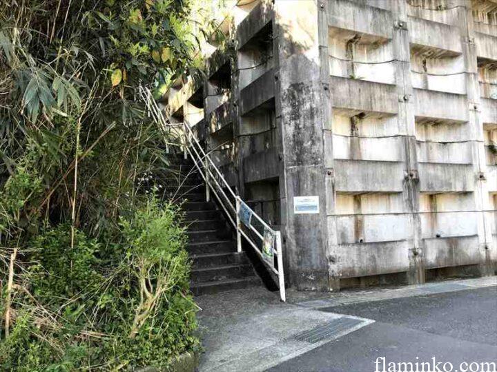 田代青少年自然の家 階段