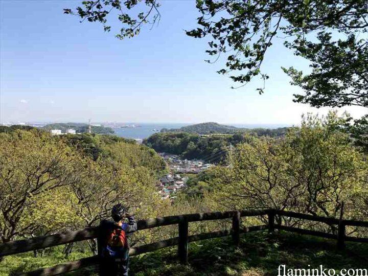 田代青少年自然の家 ハイキングコース景色