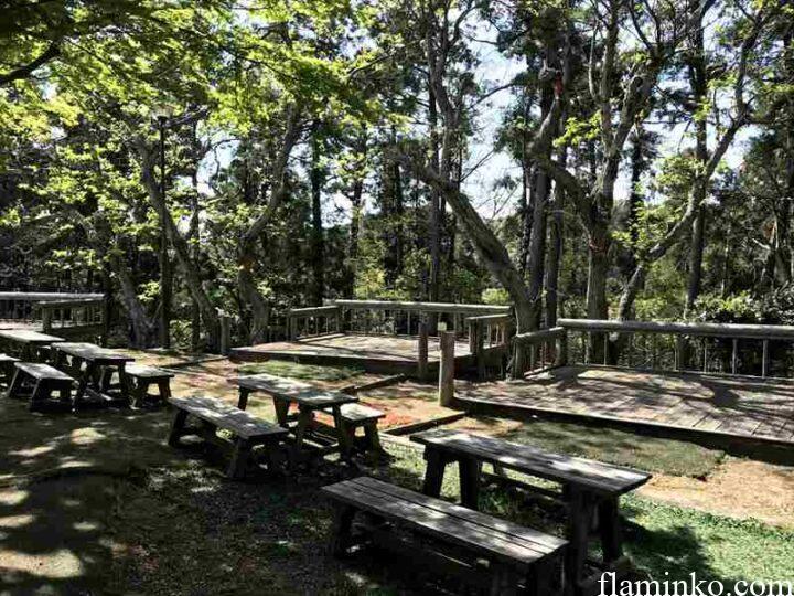 田浦梅の里 キャンプ キャンプサイト