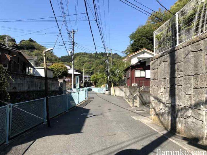田代青少年自然の家 駐車場からの道2