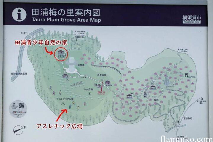 田代青少年自然の家 案内図